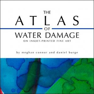 The Atlas of Water Damage on Inkjet-printed Fine Art